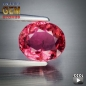 Mobile Preview: Turmalin, pink, oval, SI, 0.76 Carat, 6.2x5.4x3.1 mm, aus Mozambique, unbehandelt